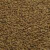 Beech Smoked Barley Malt, Weyermann, EBC: 4 - 8